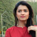 Phulpakhru Serial Actress