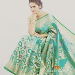 Bhagyashree Mote on Saree